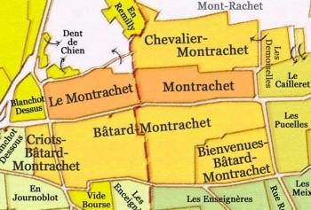 THE TASTE OF MONTRACHET