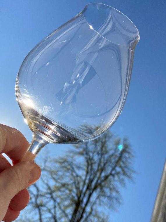 In de zon: suggesties voor heerlijke wijnen voor in je tuin of op je balkon