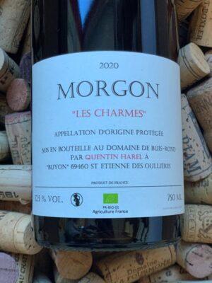 Quentin Harel Morgon Les Charmes 2018