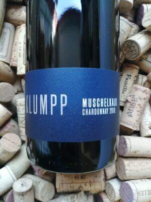 Klumpp Muschelkalk Chardonnay Baden 2019