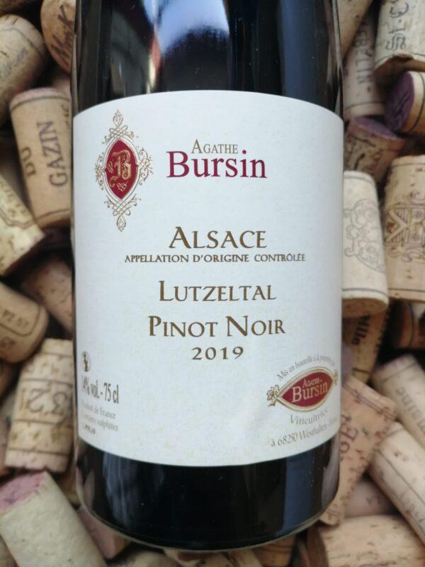 Agathe Bursin Pinot Noir Lutzeltal Alsace 2019